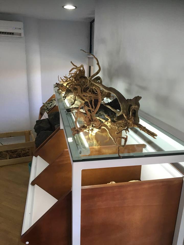 ilaeuropa-hardscape-display-01